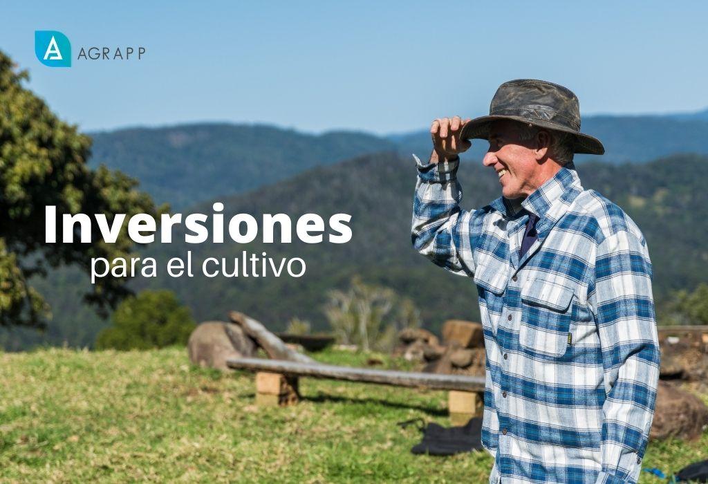 David Duarte - startup - cultivos - inversionistas